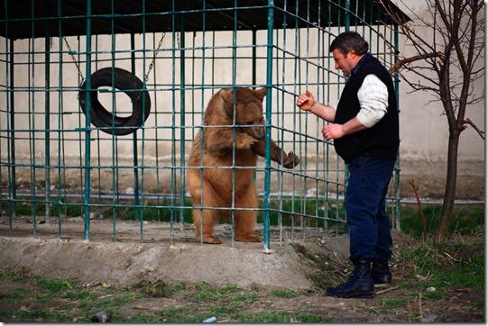 Mamuka Undelashvili, one of restaurant owners, plays with Balu 2.