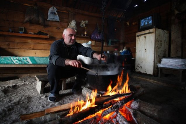 Gia Jujua, a 43-year-old cattle herder, makes traditional corn porridge in his cabin. Formerly a meteorologist by trade, Jujua started herding cattle in 1990s, when he, like many other Georgians, lost his job due to a political and economic crisis. If things are well, Jujua says, he takes two-week long shifts with cattle, after which he spends two weeks with his family in a village roughly 1.5 hours of drive away.